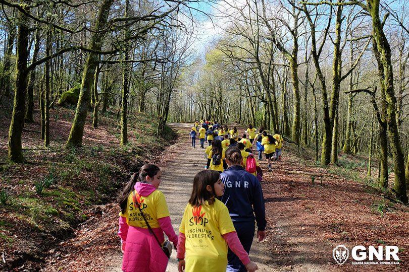 GNR Viana do Castelo - Caminhada pela floresta